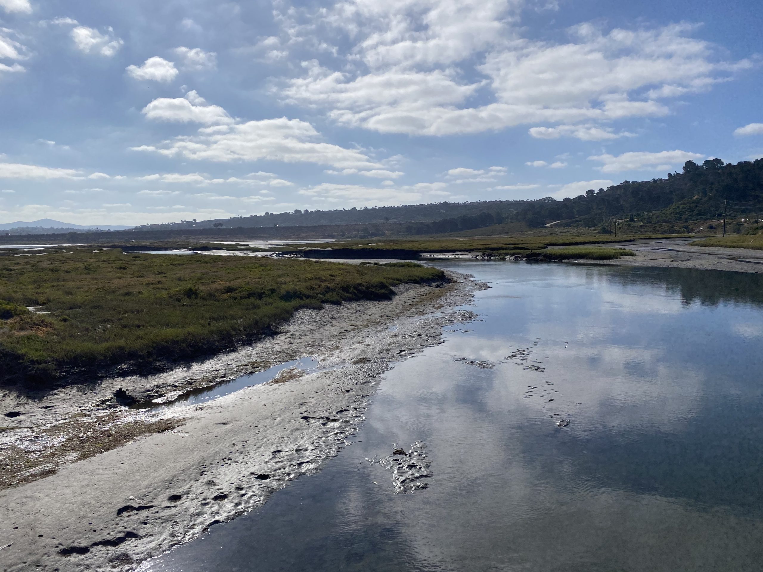 RESEARCHERS EXPLORING HOW SAN DIEGO COUNTY WETLANDS CAN BE PART OF CLIMATE-SAVING STRATEGIES
